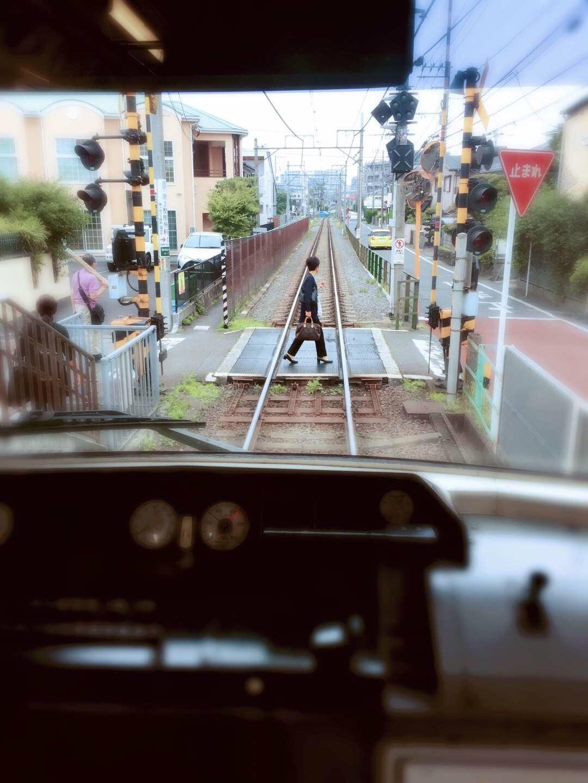 东京镰仓箱根游